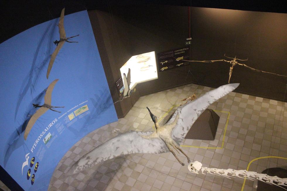 Museum of Natural Sciences photo 1